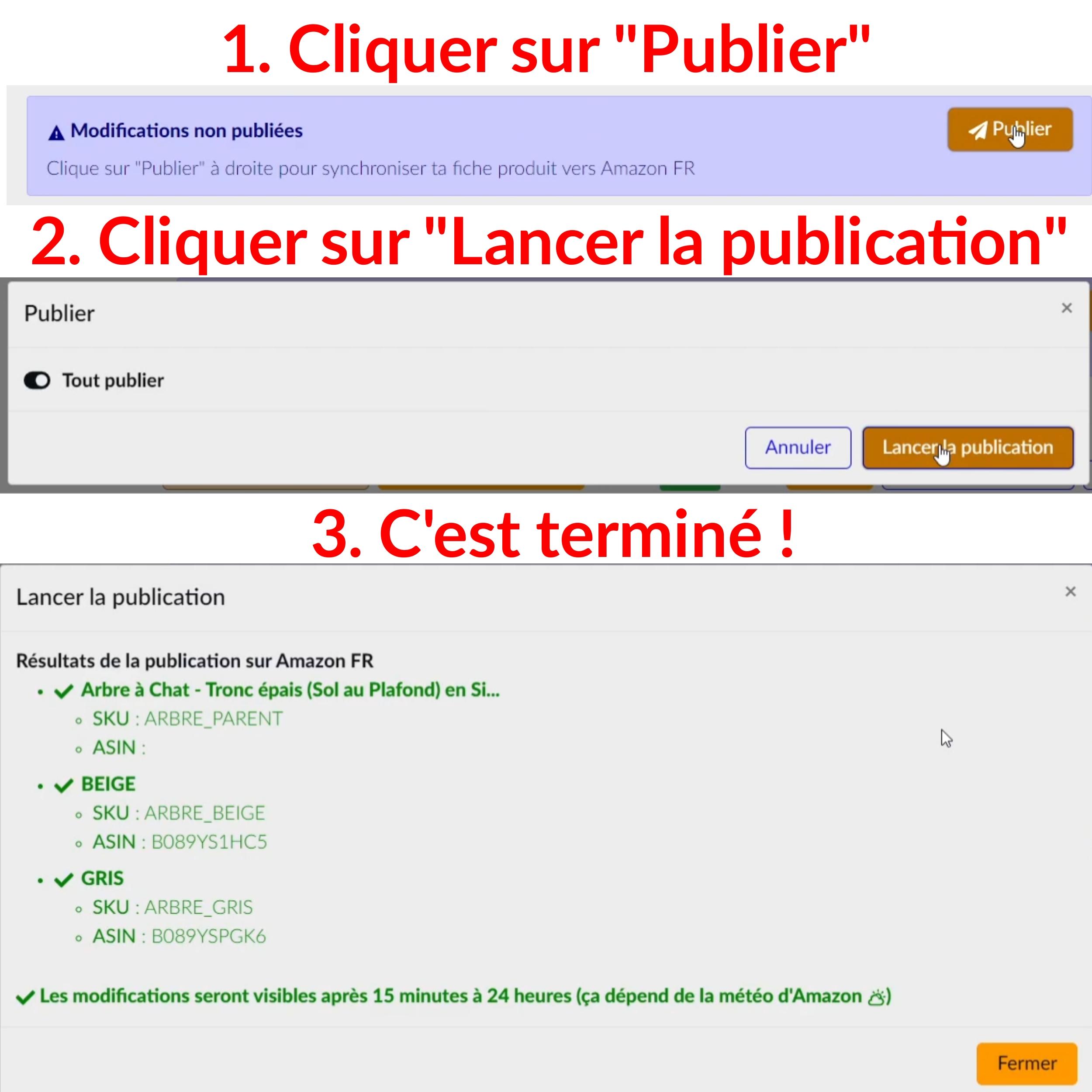 Intellifox-Publication