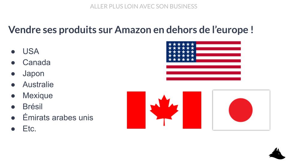 Intellifox mini-formation - Développer son activité Amazon FBA Vendre aux USA