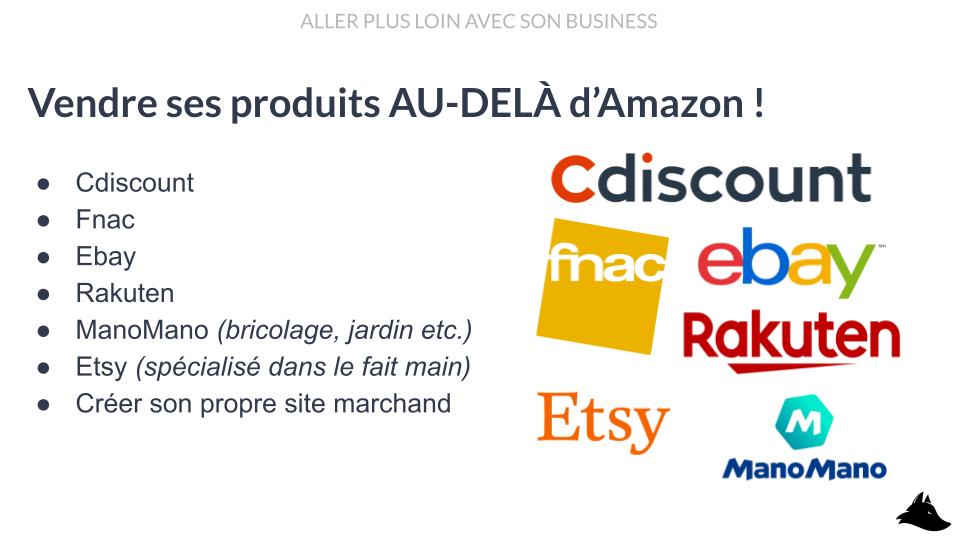 Intellifox mini-formation - Développer son activité Amazon FBA Vendre sur cdiscount