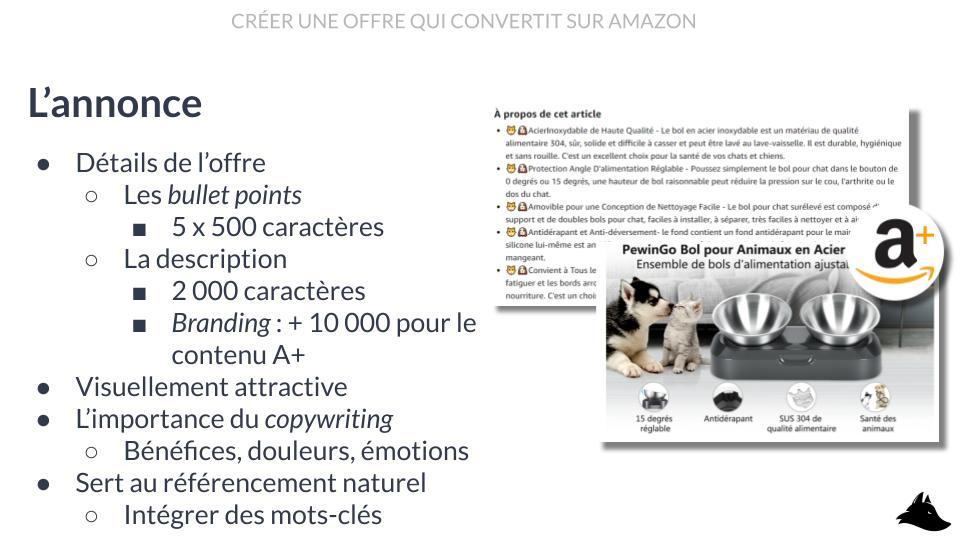 Mini formation Intellifox - L'annonce d'une fiche produit Amazon